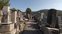 美景之清晨京都——在清水寺漫步