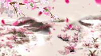 【视频素材】中国风桃花花瓣飞舞