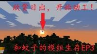 【小洲】和蚊子的模组生存EP3 放火烧山,开始动工!
