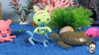 海底小纵队之棱皮龟的尴尬 38