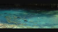 花絮 零下三度在蓝色湖潜水