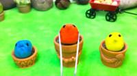 原创定格动画:从原材料开始准备,小鸡炖蘑菇,过程太有意思了