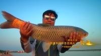 渔道中国 七十三集 金龙赣江擒大草鱼