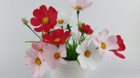 高原格桑花用纸做同样逼真,也叫幸福花哟。