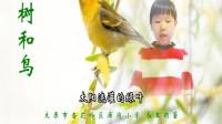 树和鸟儿童诗歌配乐朗诵视频