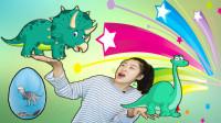 恐龙玩具扭蛋,不一样的恐龙蛋哦,一起来玩吧!