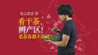 吉普号 茶山黑话 139 详解普洱茶四大产区(二):看干茶,辨产区!
