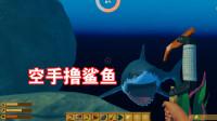 木筏求生:潜水寻宝和鲨鱼搏斗,濒死却听到神秘呼唤!