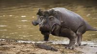 幸好灭绝了的10种巨型动物,不然的话可能是个灾难!