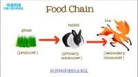 食物链中能量在传递中只有多少被保留科普知识英语学习