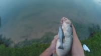 钓鱼之技巧