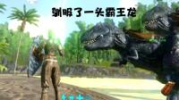 方舟生存进化手游43:驯服了一头霸王龙哇太厉害了