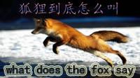 挪威神曲《狐狸叫(what does the fox say)》架子鼓演奏瓦力川