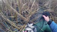 野外冒险之钓鱼