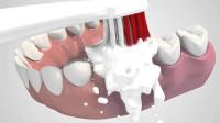 电动牙刷比普通牙刷更清洁牙齿?老外用3D动画模拟,看完解开多年疑惑!