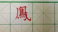 硬笔书法入门,繁体字凤的楷书写法,老铁们跟着一起练