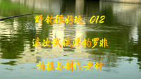 【野钓很好玩】012:这次试试浮钓罗非鱼