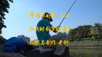 【野钓很好玩】016:水浅时练习休闲钓罗非鱼