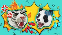 熊猫和没有礼貌的白虎能成为好朋友吗?