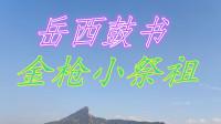 刘纯松岳西鼓书《金枪小祭祖》第一集