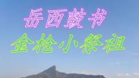 刘纯松岳西鼓书《金枪小祭祖》第二集