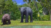 第24集 史前大象恐象