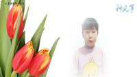 儿童诗歌《种风筝》朗诵配乐视频