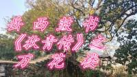 刘纯松岳西鼓书《狄青传》之《万花楼》