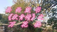 刘纯松岳西鼓书《狄青传》之《万花楼》第二集