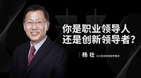 杨壮:你是职业领导人,还是创新领导者?