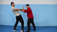 薛颠:钻拳身法也,庞超老师解析形意拳身法运动