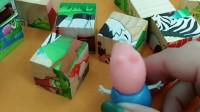 拼图玩具真好玩!乔治不小心把小奶牛拼图弄散了,还能重新拼好吗?