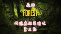 《森林》阿稳森林历险记 第三期