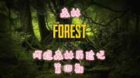 《森林》阿稳森林历险记 第四期