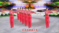 梦中的流星广场舞《牵着妈妈的手》  舞蹈:凤梅