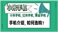 小米手机,红米手机,黑鲨手机详细介绍,网友该如何选购?