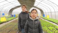 OTTOMIMI崇明游:小朋友在农场的一天