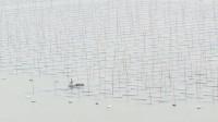 【原创】霞浦东壁 这趟算是白跑了 都是雾 这视频没法拍了