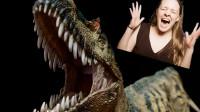 我家养了只大恐龙!!!PNSO恐龙大王角鼻龙【布说模玩002】
