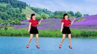 热门广场舞《花开的时候你就来看我》动感32步,轻松跳