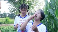 欢欢的童年喜剧:妈妈带姐妹俩一起上地,姐妹俩用玉米须做胡子玩!真是太会玩了