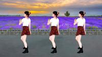 广场舞《追梦人》经典金曲时尚32步,这是一出美美的背面演示
