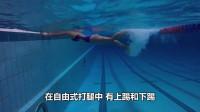 自由泳教学视频(二)——漂浮和打腿