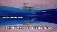 蝶泳教学视频(一)——蝶泳的基本打腿和波动