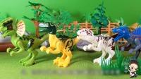 112 恐龙世界,揭秘聪明的肉食恐龙们