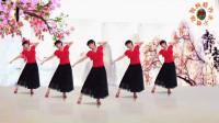 阳光美梅广场舞《伤心城市》古典形体舞附分解教学