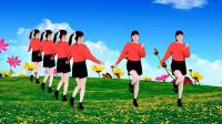入门广场舞《九寨沟的春天》春暖花开的季节,五彩花绽放的娇艳