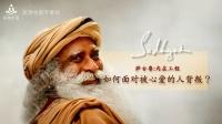 萨古鲁:如何面对被心爱的人背叛 - 冥想中国