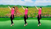 广场舞《红枣树》动听的老歌美美的舞,轻松休闲32步,送给你