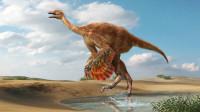114 揭秘恐龙界的奔跑健将